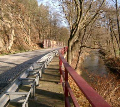 Staatsstraße (S) 83, Ausbau südlich von Meißen, Landschaftspflegerische Begleitplanung (LBP)